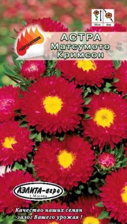 Астра МАТСУМОТО Кримсон - Дача м…